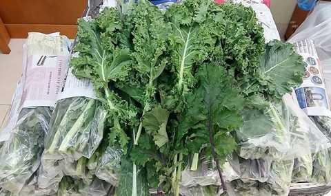 Mỗi tháng giới nhà giàu Việt chi 5 triệu đồng để mua được các loại rau sạch hữu cơ ăn hàng ngày