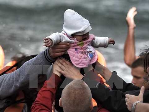 Người di cư trong chuyến hành trình vượt biển đầy nguy hiểm tới đảo Lesbos, Hy Lạp ngày 31/10