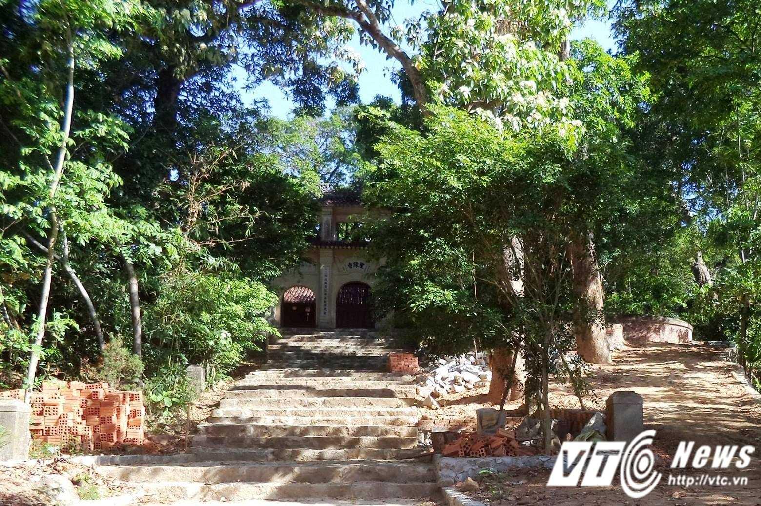Từ khi về trị sự tại chùa Thánh Duyên, Đại đức Thích Minh Chính nhiều lần tư ý đốn hạ cây cổ thụ và xây dựng công trình trái phép.
