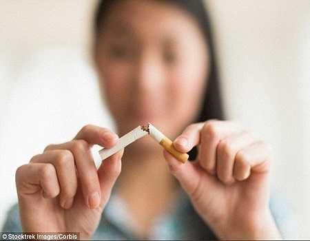 Thuốc lá ảnh hưởng đến khả năng sinh sản