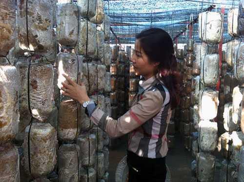 Nữ tỷ phú 8x bên cơ sở sản xuất nấm của mình