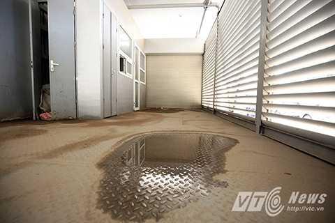 Sàn nhà ứ đọng nước bẩn, bốc mùi hôi thối do người dân thiếu ý thức phóng uế bừa bãi.