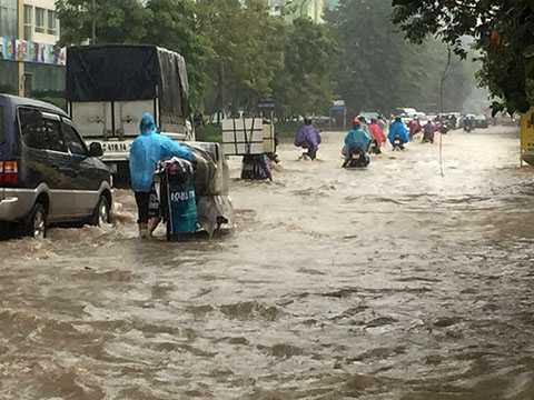 Sau cơn mưa lớn, đường Hoàng Minh Giám ngập sâu trong nước.