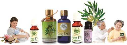 Là sản phẩm nhỏ nhưng dầu tràm Cung Đình mang đến công dụng và lợi ích không nhỏ cho sức khỏe và vẻ đẹp con người