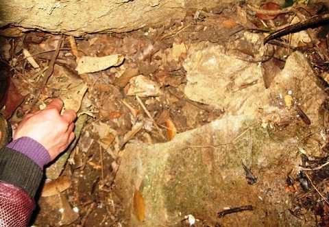 Trong hang có rất nhiều xương người