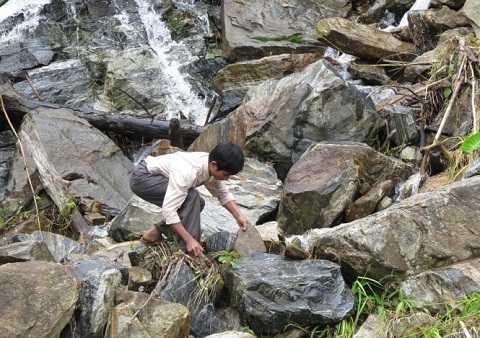 Ông Hồ Văn Thập lặn lội tìm đá để làm đàn...