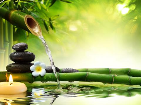 Nước là nguồn năng lượng quý mang lại tài lộc cho gia chủ
