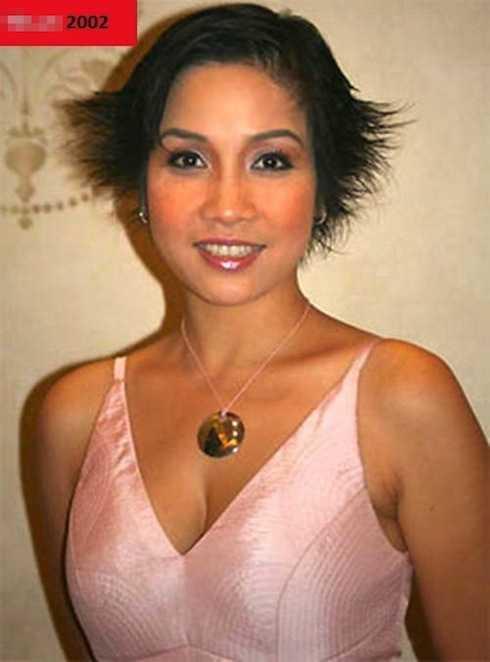 Năm 2002, Mỹ Linh bắt đầu thay đổi gu ăn mặc, trang điểm. Chị gợi cảm và tinh tế hơn thời gian trước rất nhiều.