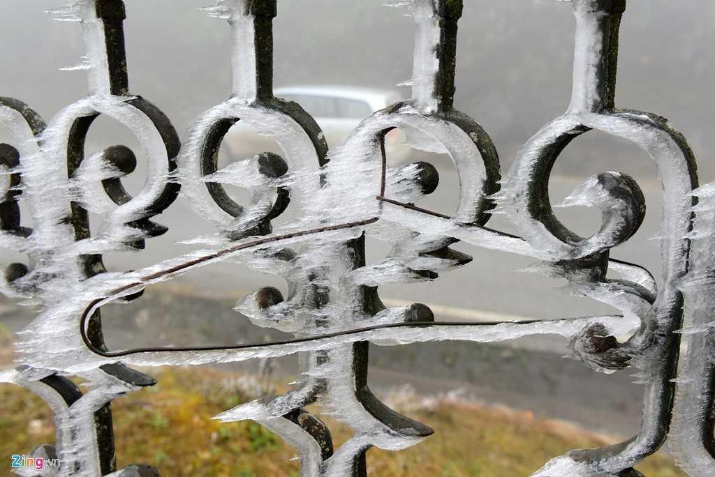 Băng không chỉ xuất hiện trên cành cây, lá cây, cỏ ven đường mà còn xuất hiện trên những hàng rào, thành tường, khung sắt.