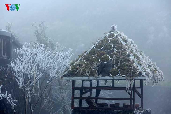 Nhiệt độ đo được tại thị trấn Sapa trong sáng 17/12 là 3 độ C, ở các khu vực băng giá nhiệt độ xuống 0 độ C.