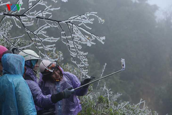 Bất chấp mưa tuyết lạnh giá, du khách cũng không bỏ lỡ cơ hội chụp ảnh bên những bông tuyết trắng xóa.