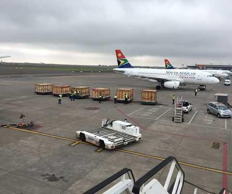 Các thùng chở thú chuyên dụng đang được đưa lên chuyến chuyên cơ thứ 7 - xuất phát từ Nam Phi lúc 15h ngày 16/12