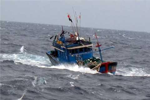 Thời tiết xấu trên biển khiến nhiều tài cá Bình Định bị nạn