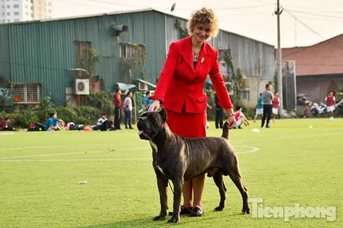 """Bà Olga Shilova người Nga đã có trên 30 năm kinh nghiệm huấn luyện chó và """"dắt chó đi show"""" được gia đình anh Kiên mời về tham dự giải."""