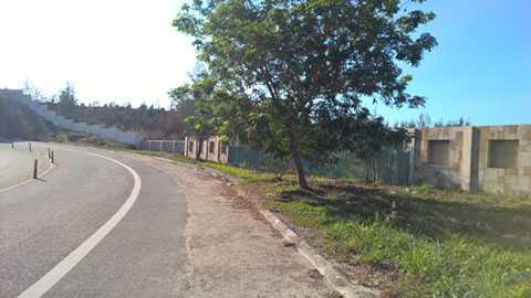 dự án nằm trơ trọi phơi mưa nắng suốt gần chục năm qua, mặc cho cây dại mọc ken dày.