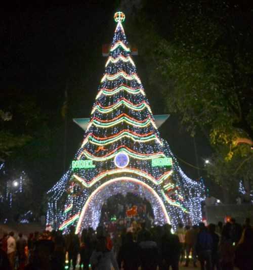 Trước cửa nhà thờ Trại Gáo là một cây thông lớn được thiết kế theo hình tháp Eiffel (Ảnh: Phạm Đức/TNO)