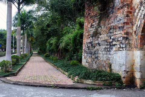 Tường thành phía Nam vẫn còn giữ được dáng cổ, cây cối mọc trùm lên.