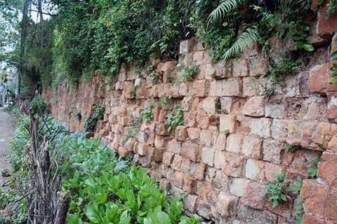 Tường thành phía Tây, nhiều đoạn đã xuống cấp.