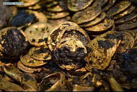 Đồng xu bằng vàng khổng lồ, có kích thước như một chiếc bánh quy.