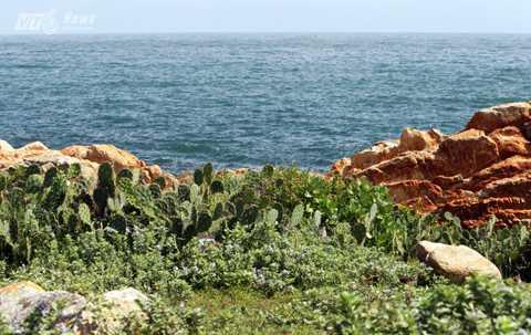 Ghềnh Đèn giữ nguyên vẹn một vẻ hoang sơ với những bãi đá ăn lan ra biển và là một phần quan trọng của cửa vịnh Xuân Đài.