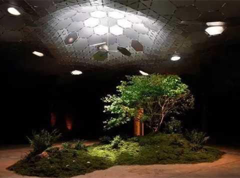 Đèn Lowline Lab. Mục đích của phát minh này là mang lại sức sống mới cho không gian ngầm bị lãng quên. Sử dụng công nghệ này, nó sẽ hấp thụ ánh sáng Mặt trời trên mái nhà và thông qua một mái vòm phản xạ, đem ánh sáng xuống lòng đất, cho phép cây xanh quang hợp như thường giống như được trồng trên mặt đất.