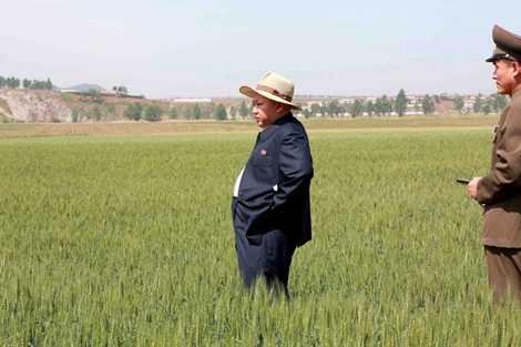 Nhà lãnh đạo trẻ đi thăm một nông trường quân đội