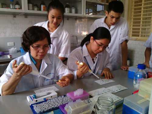 GS Nguyễn Thị Kim Lan, ngoài cùng bên phải, trong phòng thí nghiệm tại Đại học Nông lâm Thái Nguyên. Ảnh do nhân vật cung cấp