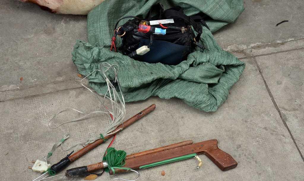 Tang vật là súng bắn xung điện chuyên dùng để trộm chó - Ảnh: Quang Duy