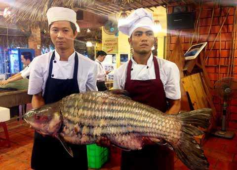 Con cá trà sóc có kích thước nhỏ hơn, chỉ nặng 55kg.
