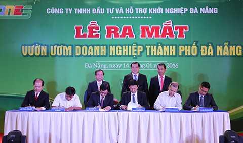 Các thỏa thuận hợp tác, triển khai các dự án đầu tiên được ký kết