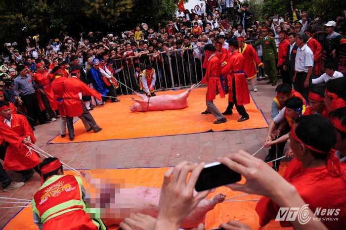 Lễ hội chém lợn ở Bắc Ninh. Ảnh minh họa