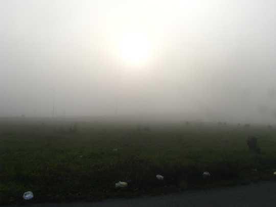 Từ sáng sớm, lớp sương mù dày đặc bao phủ ở hầu hết khắp các tỉnh, thành đồng bằng sông Cửu Long