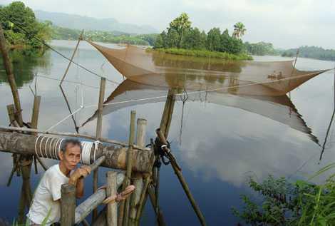 Ông Trần Trọng Dần (nhà cạnh đầm Minh Quân, Yên Bái) kể rằng, giải khổng lồ thường xuyên xé lưới, vó của người dân.