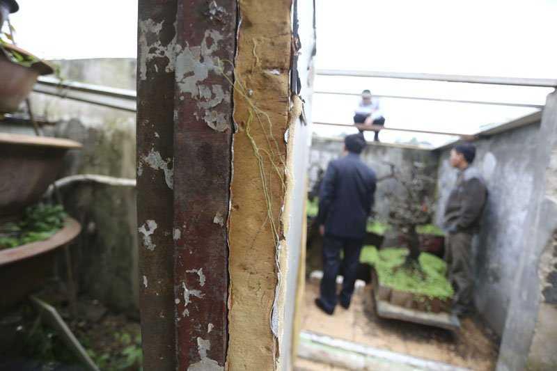 Căn phòng trồng đào Thất Thốn được bọc rất cẩn thận để cách nhiệt với môi trường bên ngoài.