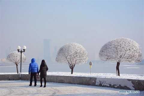 Nhiều cặp đôi dạo quanh công viên những ngày lạnh kỷ lục