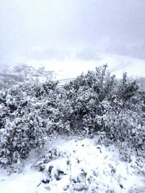 Trên các đỉnh núi tuyết phủ trắng xoá