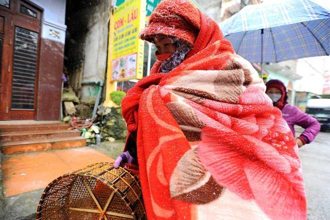 Hai ngày nay, nhiệt độ ở Sa Pa (Lào Cai) thường xuyên duy trì ở mức -3 độ C, tuyết rơi dày đặc. Áo ấm, găng tay cũng không ấm bằng một chiếc chăn.