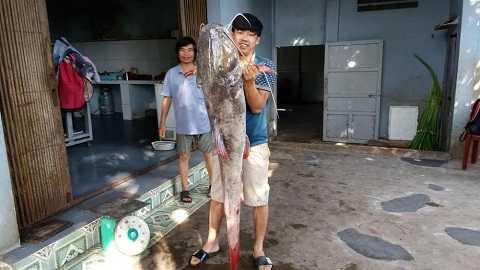 Người trong quán bất ngờ khi thấy cá có trọng lượng lớn