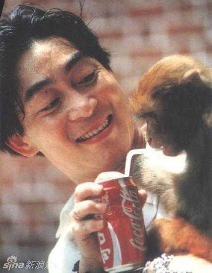 Tình cảm quấn quýt giữa khỉ với người.