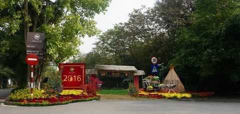 Hình ảnh cổng làng, ụ rơm, xe kéo… quen thuộc được sắp đặt khéo léo giữa muôn vàn sắc hoa