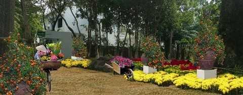 Những con đường làng quanh co, những gánh hàng hoa chở Xuân xuống phố trong Lễ hội hoa Xuân Ecopark 2016