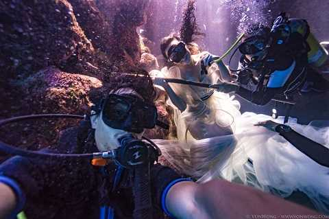 Amber và các thợ lặn khác quyết định chụp ảnh cùng cá mập thật để nâng cao nhận thức của người dân về loài động vật này.