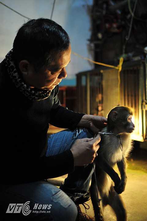 Tuổi làm nghề trung bình của khỉ là 15 năm. Theo nghệ sỹ Nguyễn Chí Quang, để khỉ có thể thực hiện thuần thục từng động tác, người huấn luyện cần có sự kiên nhẫn, không nên nóng vội vì điều này sẽ rất dễ phản tác dụng. Hơn hết, người huấn luyện phải hiểu khỉ, linh hoạt, chủ động thời gian tập luyện.