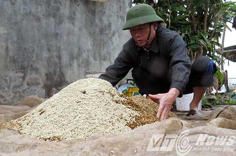 Ông Vươn đang trộn hỗn hợp thức ăn cho vịt biển sạch - Ảnh MK