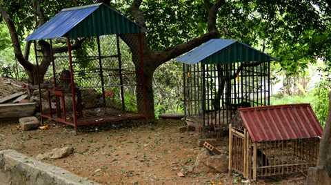 Khu chuồng nuôi khỉ ở chùa Nhẫm Dương