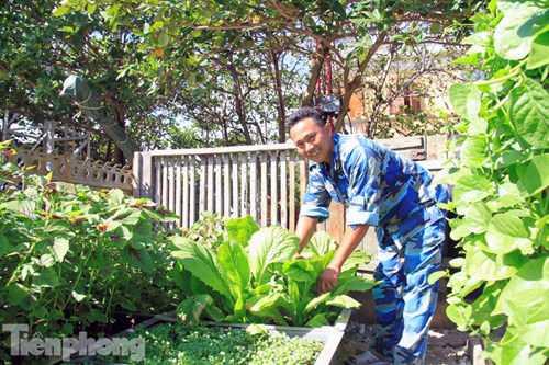 Các chiến sĩ chăm sóc vườn rau hàng ngày