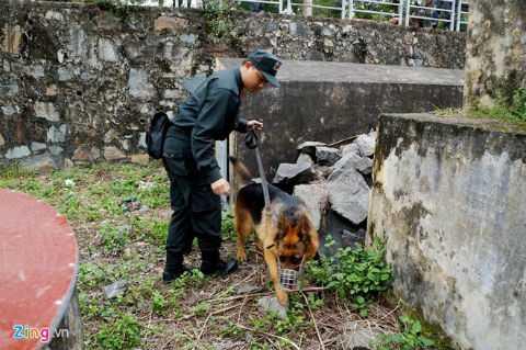 Chú chó Rex đang được viên sĩ quan cho tập tham gia đánh hơi.