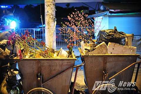 Sau Tết Nguyên đán Bính Thân 2016, nhiều cành đào được người dân mua về trưng trong nhà trước Tết bị vứt bỏ ngoài đường.