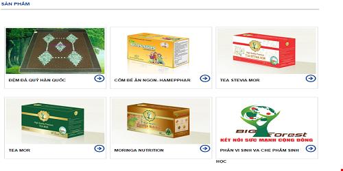 Một số sản phẩm của công ty Big Forest