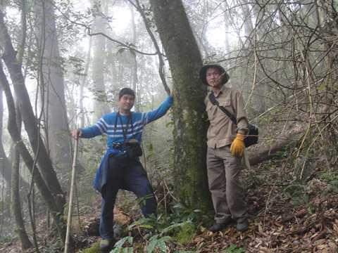Tác giả và ông Trần Ngọc Lâm bên một cây chè cổ thụ